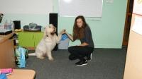 Dogoterapia w klasie pierwszej_11